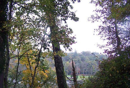 Patricia Taylor - Mountain Lake Ridge