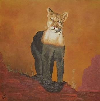 Mountain Lion by Alan Wilkinson