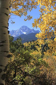 Mountain Majesty by Marta Alfred