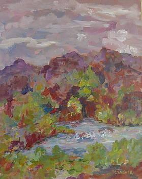 Mountain Refreshment by Carol Ann Wagner