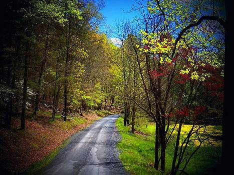 Mountain Road in WV by Joyce Kimble Smith