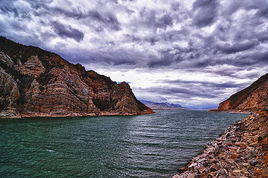 Mountain Stream by Kelly Reber