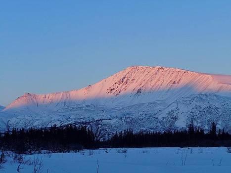 Mountain Sunshine by Amy Bradley