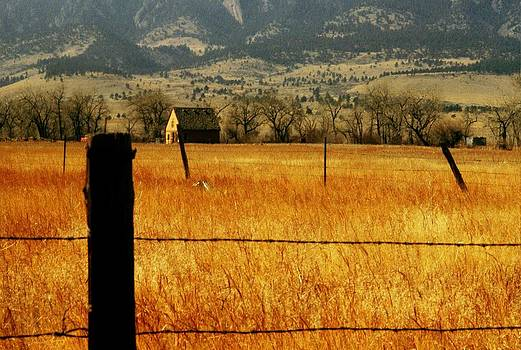 Mountain wheatfield and Barn by Jaye Crist