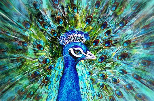 Mr. Poppycock... by Tanya Tanski