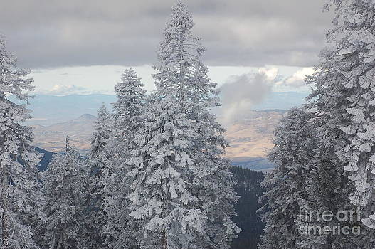 MT Ashland by Rose Jones