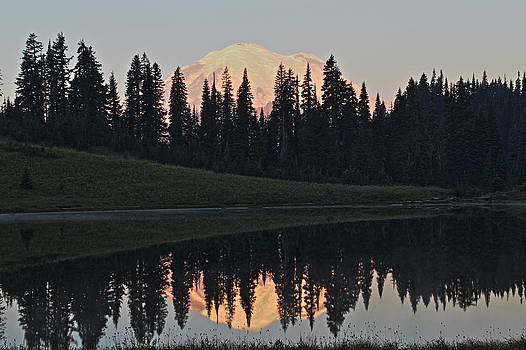 Mt. Rainier at Lake Tipsoo by Daryl Hanauer
