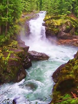 Diana Cox - Mt. Rainier Waterfall