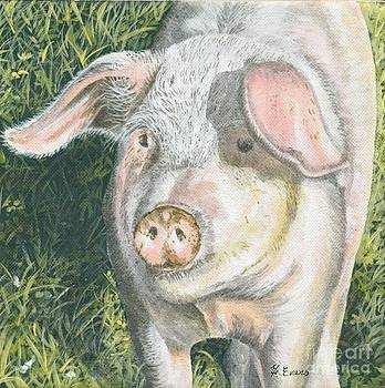 Mucky Pig by Frances Evans