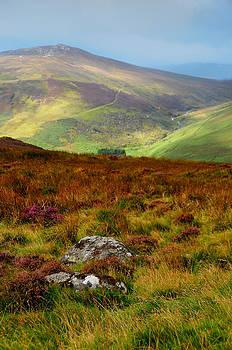 Jenny Rainbow - Multicolored Hills of Wicklow. Ireland