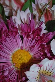 Michelle Cruz - Multicolred Bouquet 2