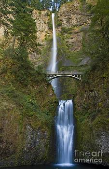 Tim Mulina - Multnomah Falls 1