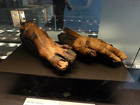 Mummy foot and hand by Christine Burdine
