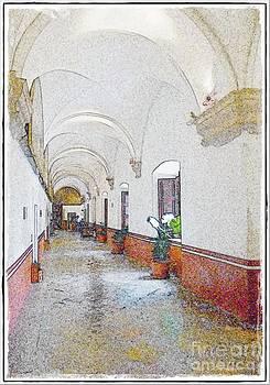 Museo del Virreinato by Frank Garciarubio