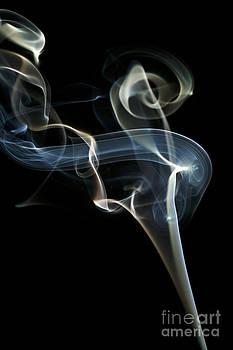 Mushroom Smoke by Yonatan Halperin