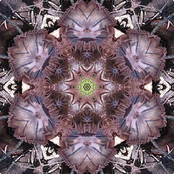 Mushroom with Green Center by Trina Stephenson