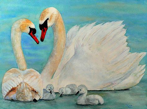 Dee Carpenter - Mute Swan Family