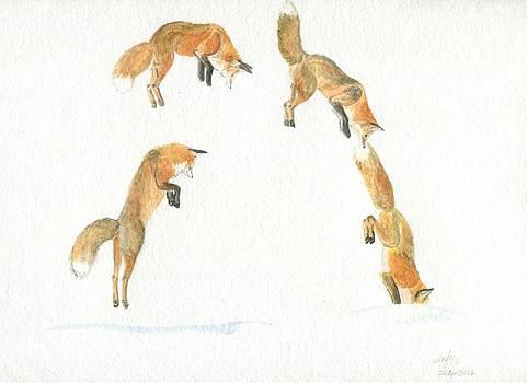 Muybridge fox by Wenfei Tong
