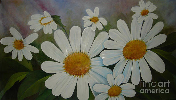 My Daisies by Agnes Rajesh