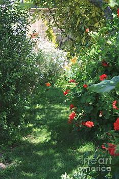 My Garden Last Summer by Phong Trinh