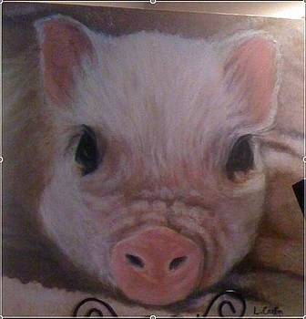 My Pink Potbelly by Laurie Cantin