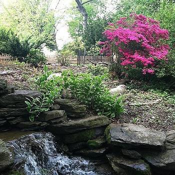 My Secret Garden by Michelle White