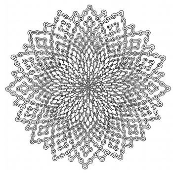 Mycelial Network by Ansel Cummings