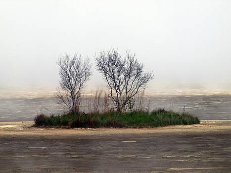 Mystery Island by Kim Schmidt