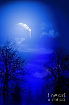 Mystic Night by Mark Ashkenazi