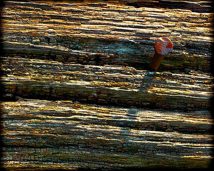 Nail In Wood by Randall Bass
