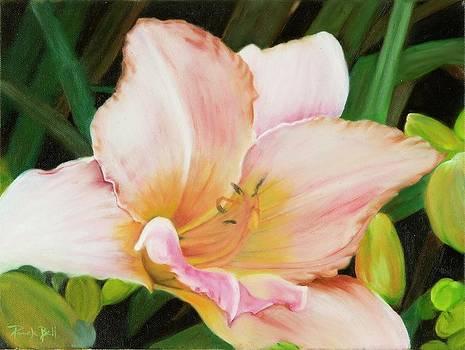 Nancy's Lily I by Pamela Bell