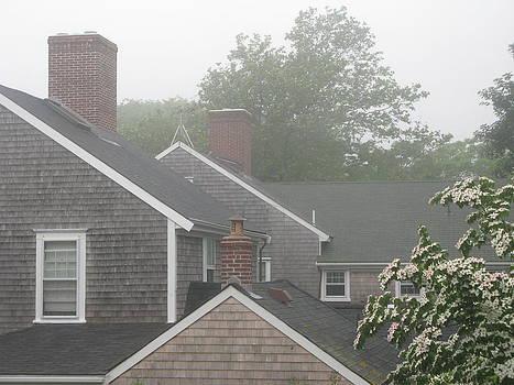 Nantucket Fog 85 by Julia Jones
