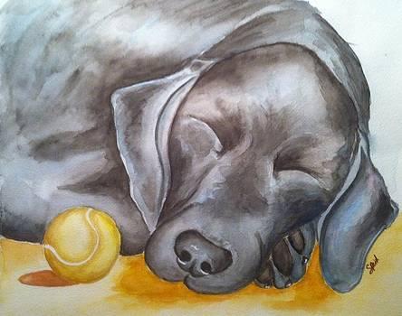 Nap Time by Stephanie Reid