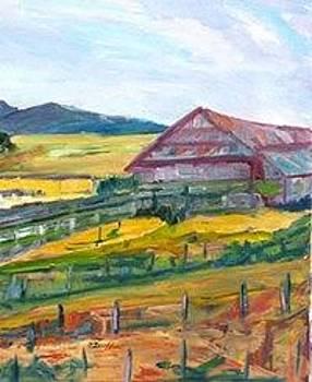 Napa Barn by Carolyn Zaroff