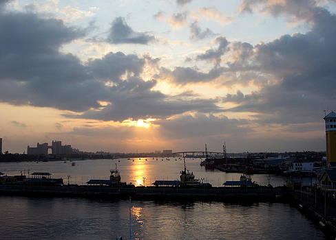 Nassau Morning by David Campbell