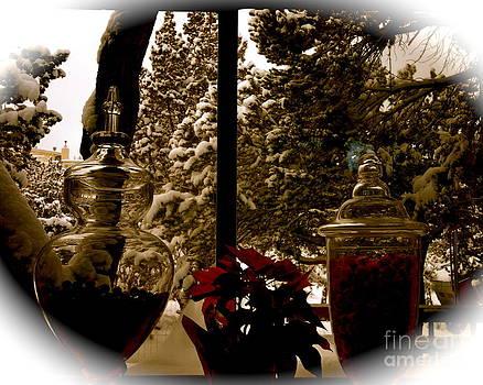 Nature meets Christmas by Monica Van de Water