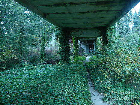 Nature Returns by Linda Battles