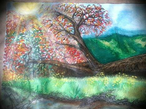 Nature's Beauty by Aleena Ulfat