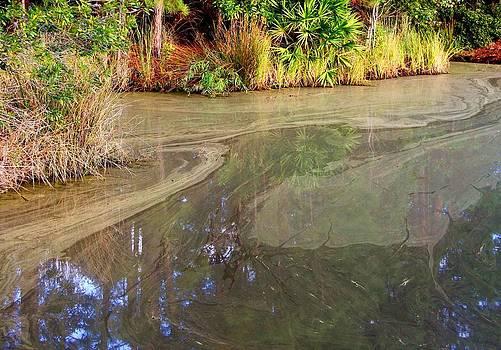 Nature's Brushstrokes by Jim Ziemer