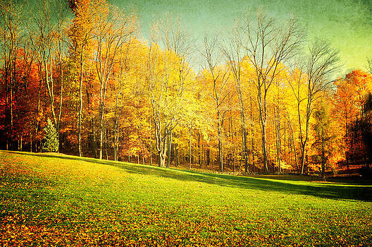 Natures Golden days by Dick Wood