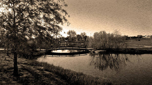 Nature's Reflection Sepia by Sergio Aguayo