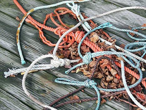 Daryl Macintyre - Nautical Rope