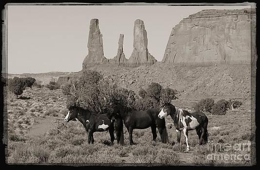 Navajo Mustangs by Lori Bristow