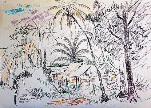 Nayarit Mexican Huts by Aileen Markowski