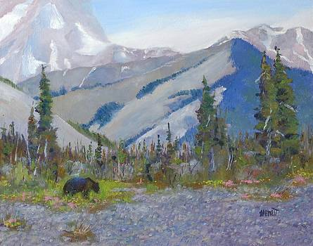Near Muncho Lake British Columbia by Philip Hewitt