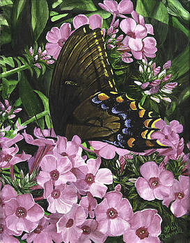Nectar's Bounty by Gail Darnell