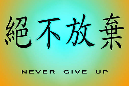 Never Give Up by Linda Neal