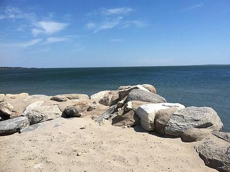 New England beach  by David Stich