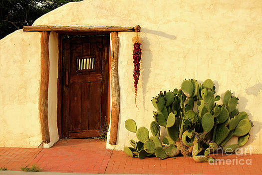 New Mexico Door at Sunset by Lawrence Costales