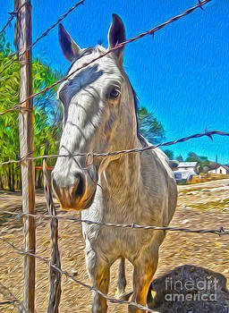 Gregory Dyer - New Mexico Horse